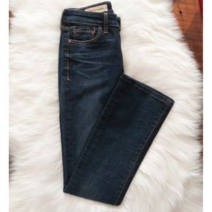 Anthro Pilcro and the Letterpress Stet Jeans